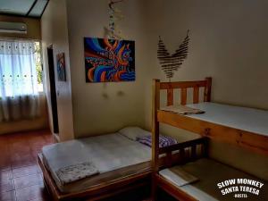 Slow Monkey Hostel, Affittacamere  Playa Santa Teresa - big - 4