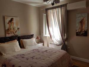 Lydias Apartment Corfu Town, Appartamenti  Città di Corfù - big - 42
