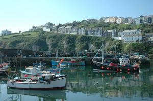Honeycombe House, Bed & Breakfast  Mevagissey - big - 34