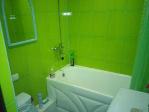 Apartment on Radishcheva 13 - Bigashevo