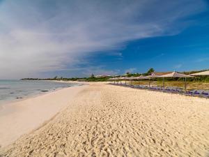 Paradisus Playa Del Carmen La Esmeralda (11 of 71)