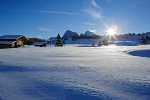 Adler Spa Resort Dolomiti (29 of 65)