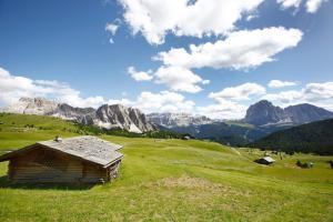 Adler Spa Resort Dolomiti (31 of 65)