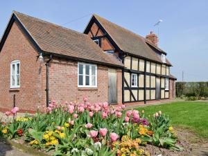 Bank Cottage - Tenbury