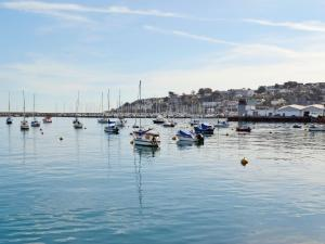 Rockhopper Cottage, Case vacanze  Brixham - big - 14