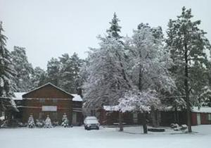 Lumbermen's Village, Priváty  Pinetop-Lakeside - big - 28