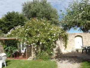 Chambres et Tables d'hôtes à l'Auberge Touristique, Bed and breakfasts  Meuvaines - big - 16
