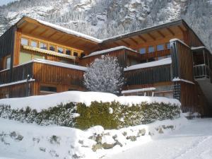 Alpenapart Grüner