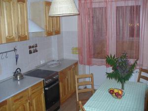Апартаменты на Чкалова, 65-1 - Grushevyy