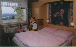 Hotel Im Hagen, Pensionen  Königswinter - big - 2