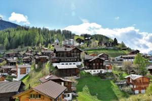 The Alpina Mountain Resort & Spa (11 of 63)