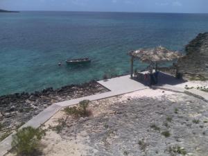 obrázek - Caribbean Blue