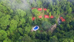 Esquinas Rainforest Lodge, Golfito