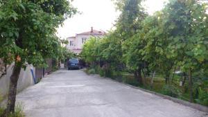 Гостевой дом На Адыгаа, Гагра