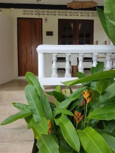 Visit Natural Detox Resort, Hotels  Strand Lamai - big - 17