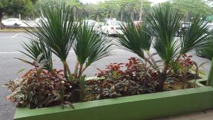 Home Inn Skudai SOHO, Hotel  Johor Bahru - big - 76