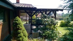 Domek Bory Tucholskie