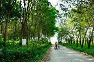 The Village Coconut Island (25 of 150)