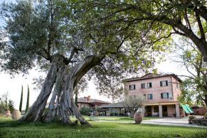 Locanda Poggioleone - AbcAlberghi.com