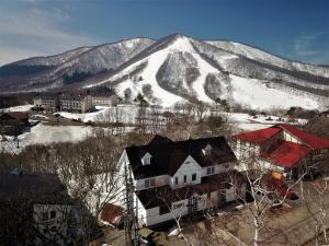 Madarao Mountain Lodge - Hotel - Iiyama