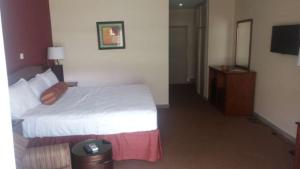 Golden Tulip Essential Kimbima, Hotels  Freetown - big - 41