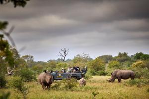 Motswari Private Game Reserve (28 of 31)