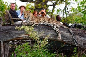Motswari Private Game Reserve (31 of 31)