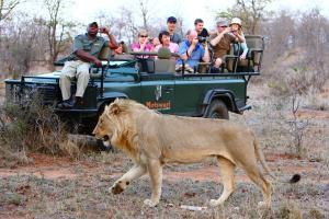 Motswari Private Game Reserve (24 of 31)