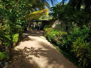 Nilaveli Beach Rooms, B&B (nocľahy s raňajkami)  Nilaveli - big - 104
