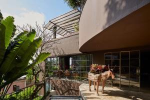 Santa Teresa Hotel RJ MGallery (36 of 136)