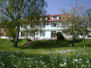 Hotel Grünwald - Aurach
