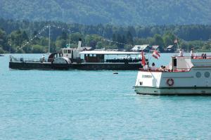 Das Bootshaus, Chalet  St. Wolfgang - big - 6