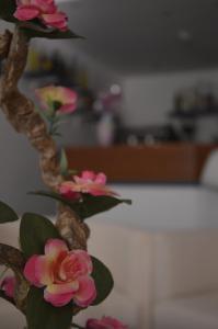 Hotel Fucsia, Hotels  Riccione - big - 99