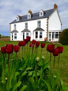 St George's Country House