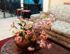 Xua Hostel Santos, Bed & Breakfasts  Santos - big - 27