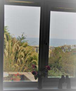 Trennicks, Bed and breakfasts  Mevagissey - big - 7