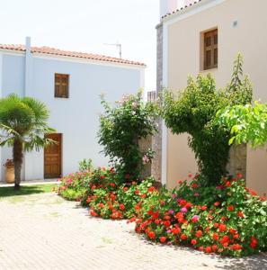 Mouria Studios Argolida Greece