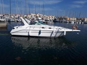 Location gîte, chambres d'hotes Boat Vedette Arlequin dans le département Aude 11