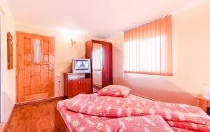 Pensiunea Gaby, Guest houses  Dîmbovicioara - big - 22