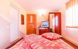 Pensiunea Gaby, Guest houses  Dîmbovicioara - big - 17