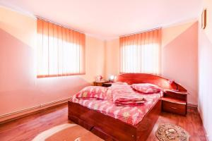 Pensiunea Gaby, Guest houses  Dîmbovicioara - big - 30