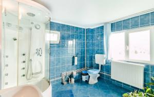 Pensiunea Gaby, Guest houses  Dîmbovicioara - big - 18