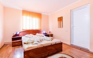 Pensiunea Gaby, Guest houses  Dîmbovicioara - big - 14