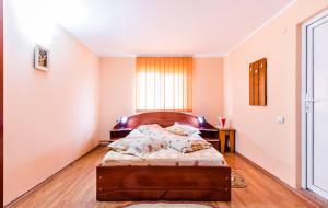 Pensiunea Gaby, Guest houses  Dîmbovicioara - big - 23