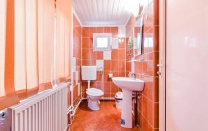Pensiunea Gaby, Guest houses  Dîmbovicioara - big - 12