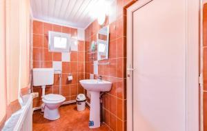Pensiunea Gaby, Guest houses  Dîmbovicioara - big - 11