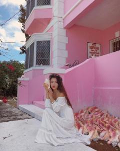 Ostelli e Alberghi - Da Pink And White Palace