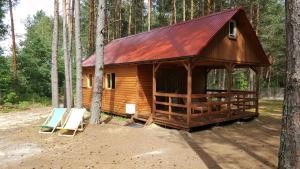 Domki w Sosnowym Lesie