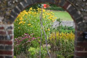 obrázek - The Garden Room
