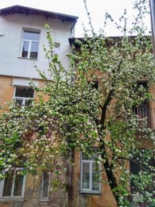Apartment Rappoporta str., Apartmány  Lvov - big - 33